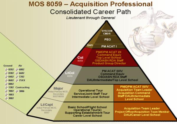 Director Acquisition Workforce Management